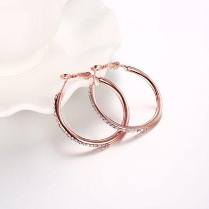 Cercei rotunzi placati aur roze cu pietricele profil