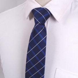 Cravata barbati albastra carouri