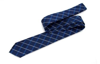 Cravata barbati albastra carouri sus