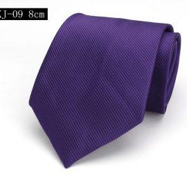 Cravata barbati eleganta mov
